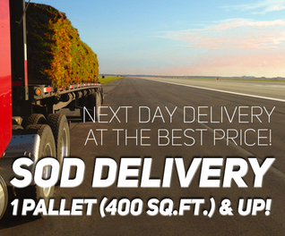 Sod Delivery